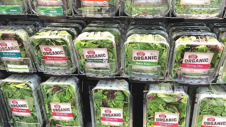 کیسه نایلونهای نانو و ظروف تازه نگهدار سبزی مرزه