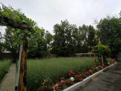 باغ فرخ11