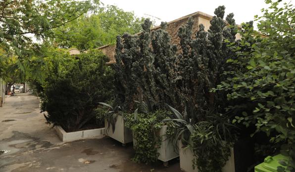 باغ ملک فرخ14