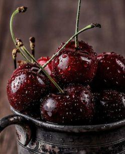 شرایط نگهداری انواع میوه در سردخانه