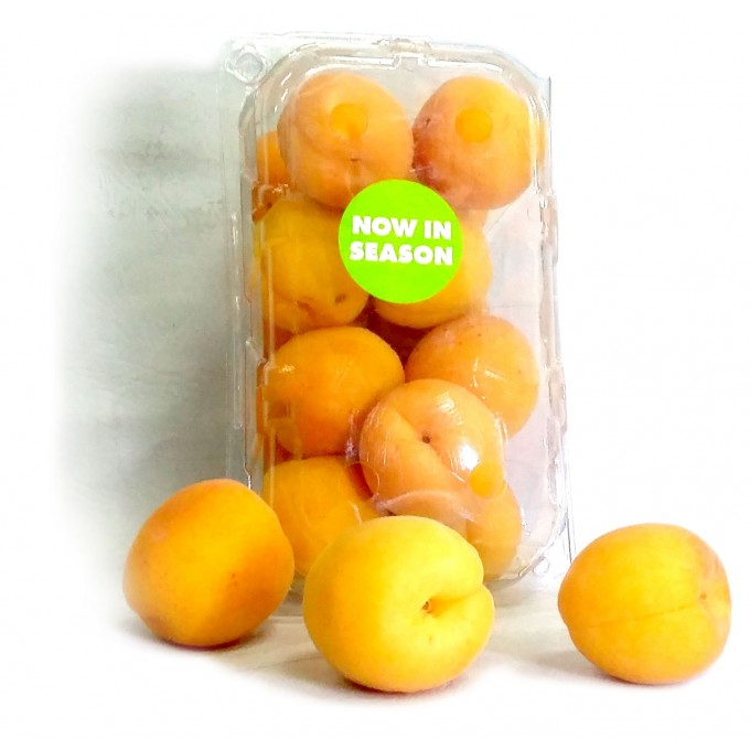 آلو- Apricots