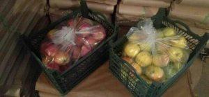 سیب - Apple