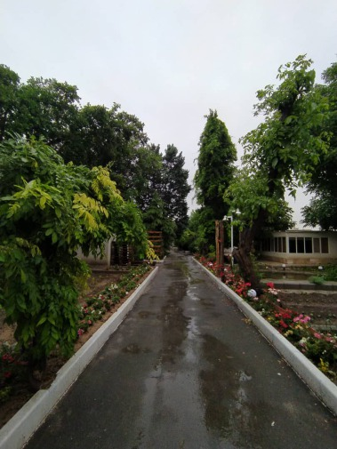 باغ فرخ3