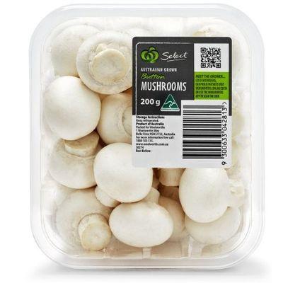 Mushrooms- قارچ