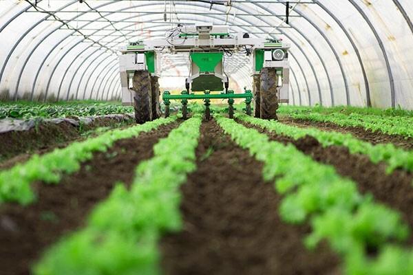 صادرات و واردات محصولات کشاورزی