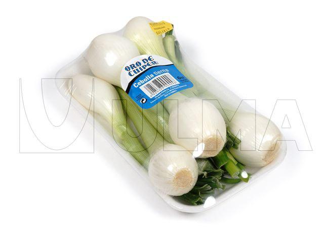 Spring Onion- Salad Onion - پیازچه